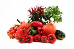 Vegetable (chili, tomatoes, pumpkin etc.) Royalty Free Stock Photos