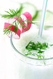 Vegetable cocktail. With cucumber Royalty Free Stock Images