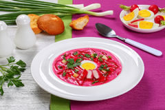 Vegetable cold summer soup with beet Royalty Free Stock Image