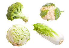Vegetable collage Stock Photography
