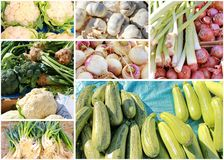 Vegetable collage Royalty Free Stock Images