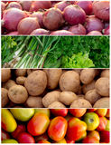 Vegetable collage Stock Images
