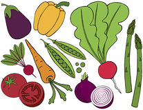 Vegetable Collection. A collection of doodle vegetables Royalty Free Stock Photos