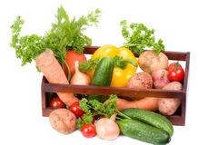Vegetable collection Stock Photos