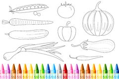 Vegetable Color Book Stock Photo