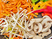 Chinese cooking. Colorful  food mix cooking ingredient vegetable closeup bean sprout soy mushroom  chili pepper  carrot Royalty Free Stock Photos