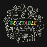 Vegetable colorful gradient with line icons set Stock Images