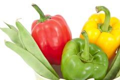 Vegetable composition Stock Photos