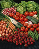 Vegetable composition Royalty Free Stock Photo