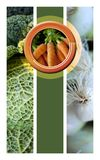 Vegetable composition on a collage Royalty Free Stock Photo