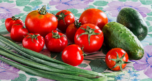 Vegetable composition for fresh salad: cucumbers, tomatoes and green onions on a tablecloth. Stock Photography