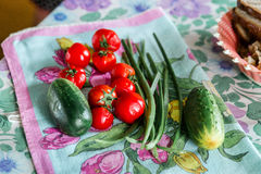 Vegetable composition for fresh salad: cucumbers, tomatoes and green onions on a tablecloth. Stock Image