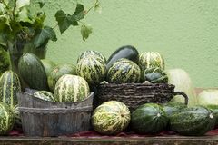 Vegetable - courgettes Stock Photo