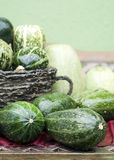 Vegetable - courgettes Royalty Free Stock Photo