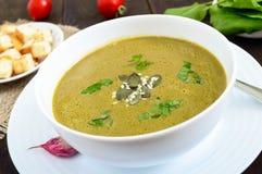 Vegetable cream суп с шпинатом и картошками в белом шаре с гренками чеснока на темной деревянной предпосылке Стоковое Изображение