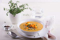 Vegetable cream soup with pumpkin and barley Stock Image