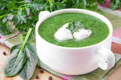 Healthy vegetable soup with spinach and mozzarella Royalty Free Stock Photo