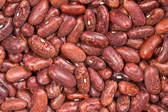 Vegetable, crude, Background haricot bean Royalty Free Stock Photos