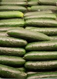Vegetable - Cucumber. Cucumber in the middle of many cucumbers Stock Image
