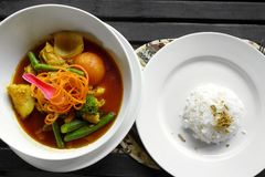Vegetable curry ethnic dish & rice Royalty Free Stock Image
