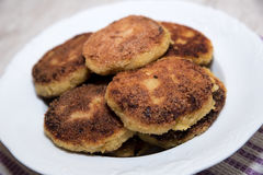 Vegetable cutlets Royalty Free Stock Image