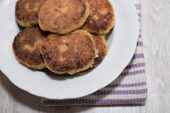 Vegetable cutlets Royalty Free Stock Photo
