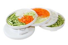 Vegetable Dehydrator Stock Image