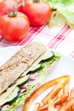 Vegetable diet sandwich Stock Image