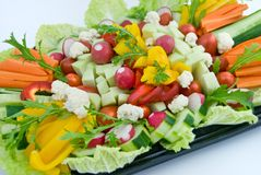 Vegetable dish. A vegetable dish with carrot, radish, cauliflower, lettuce, paprika, cucumber, iceberg lettuce stock images