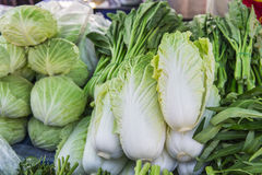 Vegetable in display market, bangkok, thailand Stock Images