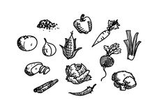 Vegetable Doodle Icon Set Stock Photography