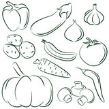 Vegetable doodles Stock Images