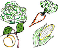 Vegetable Doodles Royalty Free Stock Photo