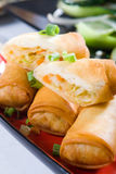 Vegetable egg roll Royalty Free Stock Photos