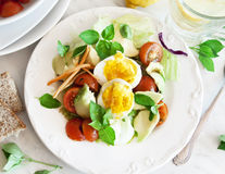 Vegetable and Egg Salad Royalty Free Stock Images