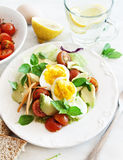Vegetable and Egg Salad Stock Photo
