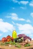 Vegetable eggplant, squash, tomato, zucchini ratatouille ingredients Stock Image