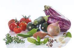 Vegetable eggplant, squash, tomato, zucchini ratatouille ingredients Royalty Free Stock Photography