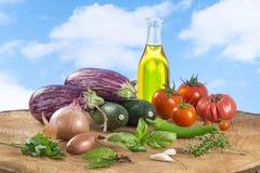 Vegetable eggplant, squash, tomato, zucchini ratatouille ingredients Stock Photo
