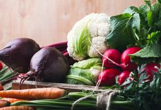 Vegetable farming. Beetroots, rudishes, cauliflower on wooden. Vegetable farming. Harvest still life.   Food composition of fresh organic beetroots, rudishes Stock Photo