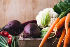 Vegetable farming. Beetroots, rudishes, cauliflower and carrots. Vegetable farming. Harvest still life.   Food composition of fresh organic beetroots, rudishes Stock Image