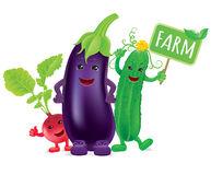 Vegetable farms and board Royalty Free Stock Photography