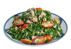 Vegetable fern salad, Low fat, diet food. Stock Images