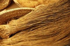 Vegetable fiber Stock Photo
