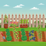 Vegetable field farm fence. Illustration eps 10 Royalty Free Stock Image