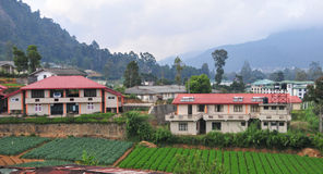 Vegetable fields and house in Dalat Stock Photos