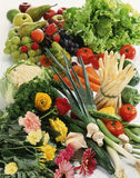 Vegetable and flower composition Royalty Free Stock Image