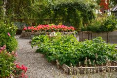 Vegetable and flower garden. In sunny summer day Stock Photography