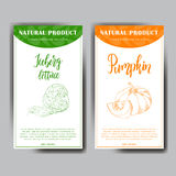 Vegetable food banner. Iceberg lettuce and pumpkin sketches. Organic food poster. Vector illustration. Stock Photos