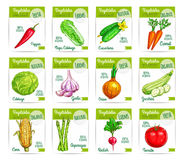 Vegetable food on card or sale tag, labels Stock Image